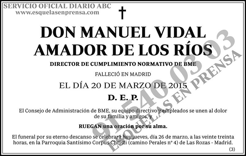Manuel Vidal Amador de lo Ríos